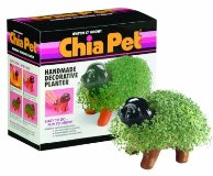 Chia Pet Decorative Planter