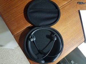 Neckband and earbuds in cushioned zippered case